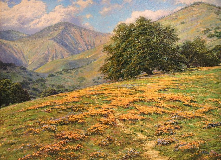 Grass Mountain Poppies