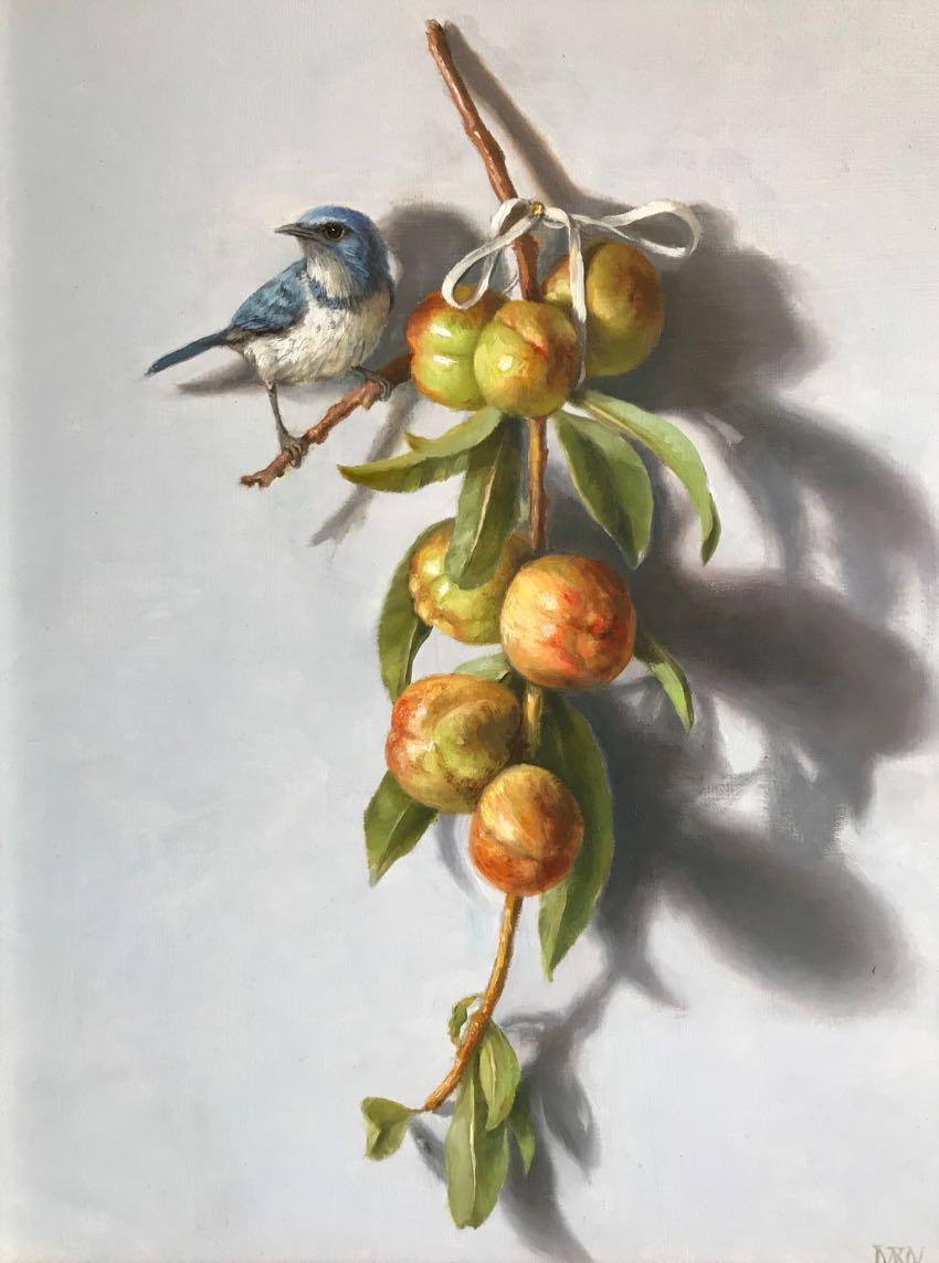 Jay and Nectarines