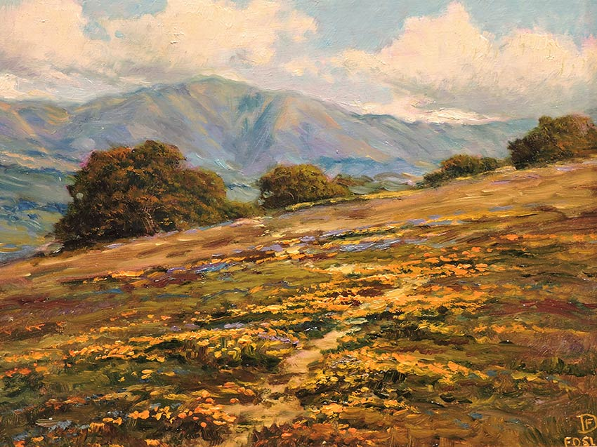 Santa Ynez Valley Poppies