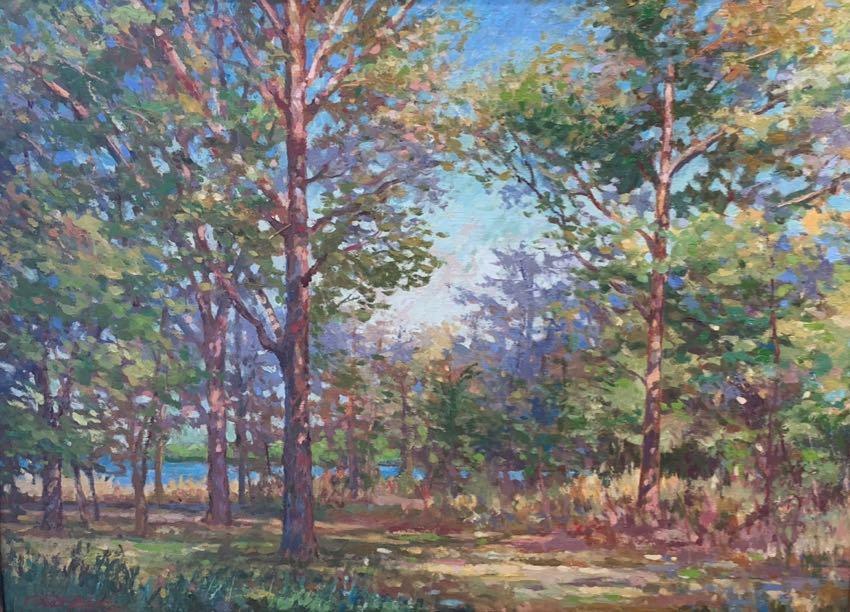 Forest Symphony 20x24 Fischer
